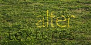 Short grass vegetation